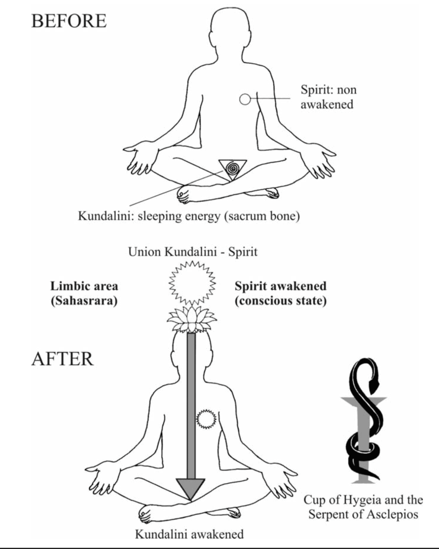 4 Kundalini and Self- Realisation – Amruta
